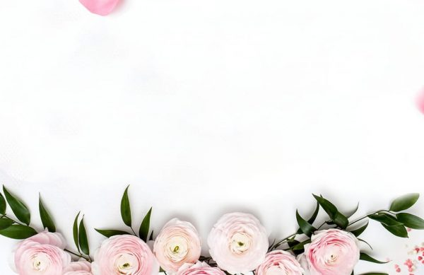 Bouquet Rose Roses Flower Background (Turbo Premium Space)