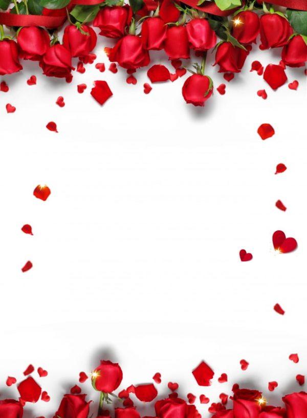 Romantic Red Roses Background (Turbo Premium Space)