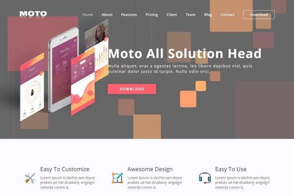 Moto - WordPress Landing Page Theme