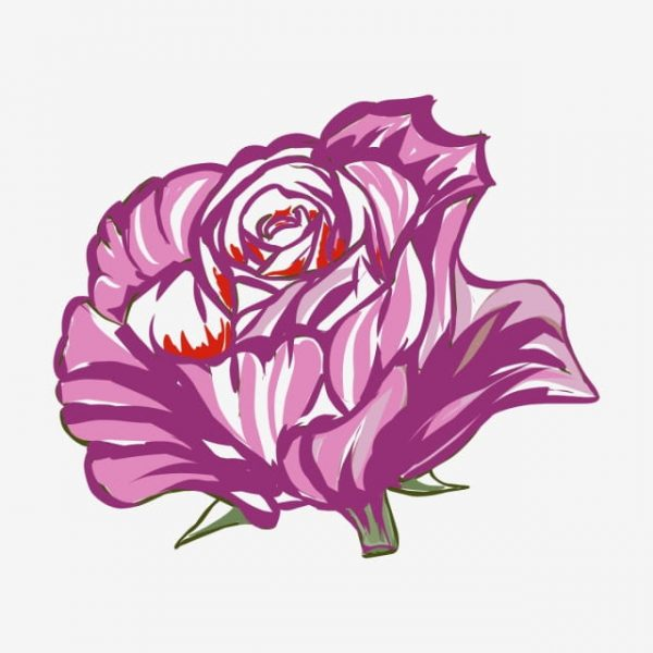 Illustration Of A Rose On A White Background (Turbo Premium Space)