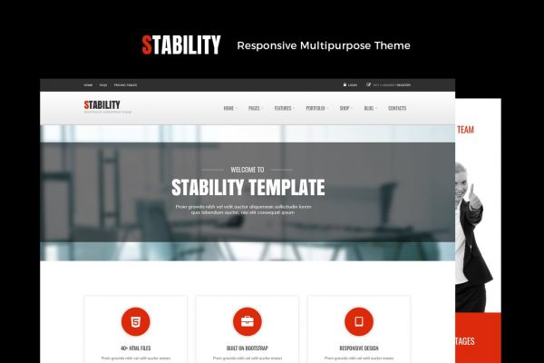 Stability Responsive MultiPurpose WordPress Theme
