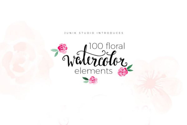 Watercolor Floral Elements (Turbo Premium Space)