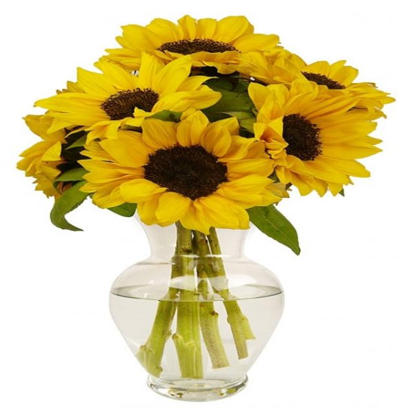 Background Material Design For Beautiful Sunflower Inserting Bottle (Turbo Premium Space)