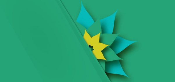 3d Paper Flower On Green Background (Turbo Premium Space)