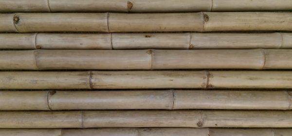 Bamboo Wood Panels Horizontal Banner Background (Turbo Premium Space)