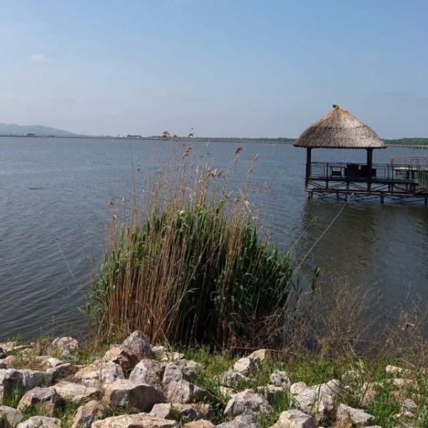 Beautiful Scenery With Sunny Lake Landscape (Turbo Premium Space)