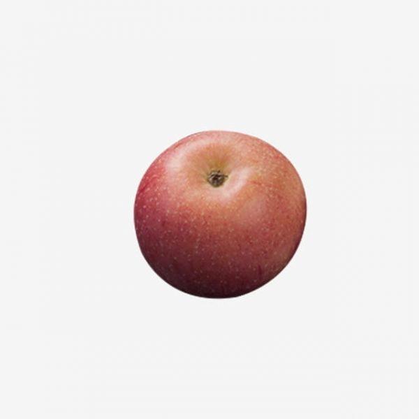 Christmas Eve Red Apple (Turbo Premium Space)