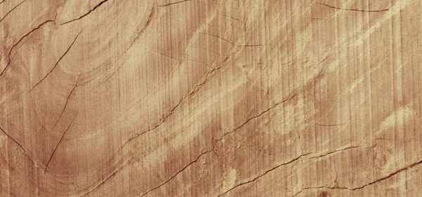 Cracked Wooden Texture Background Wood Plane (Turbo Premium Space)