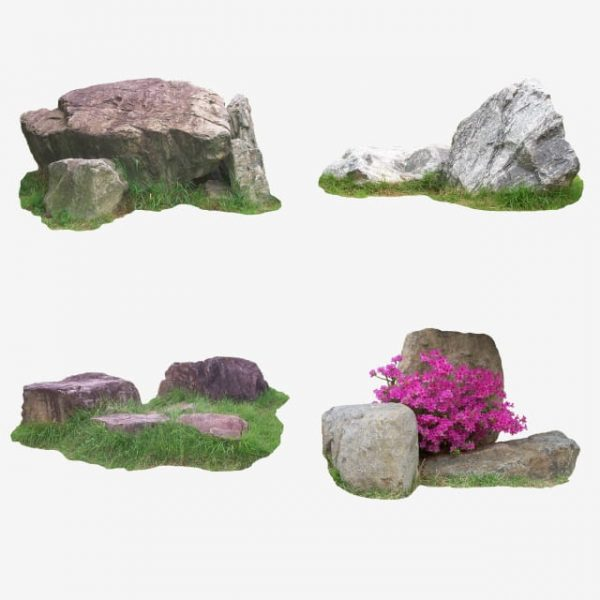 Natural Flower And Stone In Garden