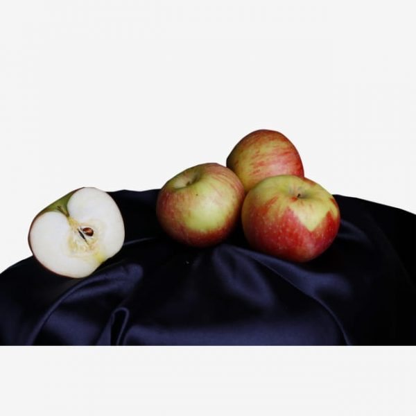 Summer Fruit Red Apple Delicious (Turbo Premium Space)